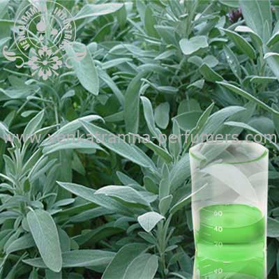 Gingergrass (Cymbopogon Martinii) Pure Essential Oil